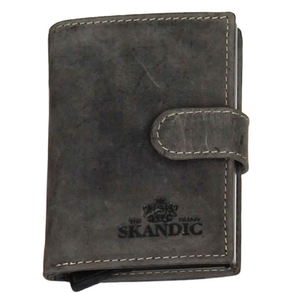 skandic-203.00003.11-a.jpg